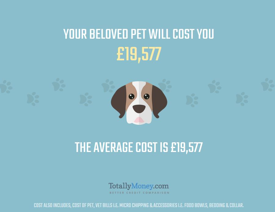 cost of pet